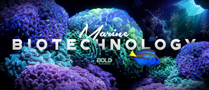 marine resources, corals and a fish
