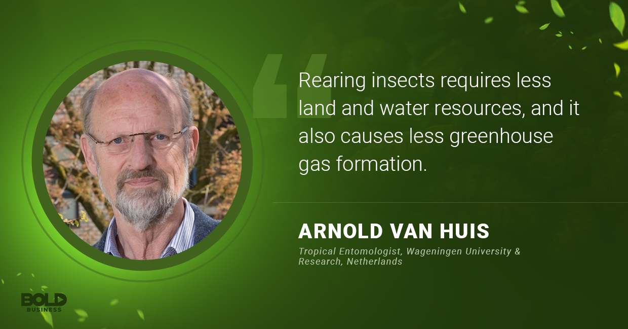 a photo quote of Arnold Van Huis about rearing edible bugs