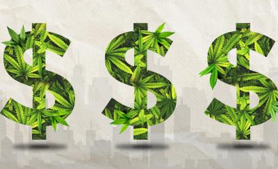 Capital Imbalances Offer Opportunities in Cannabis