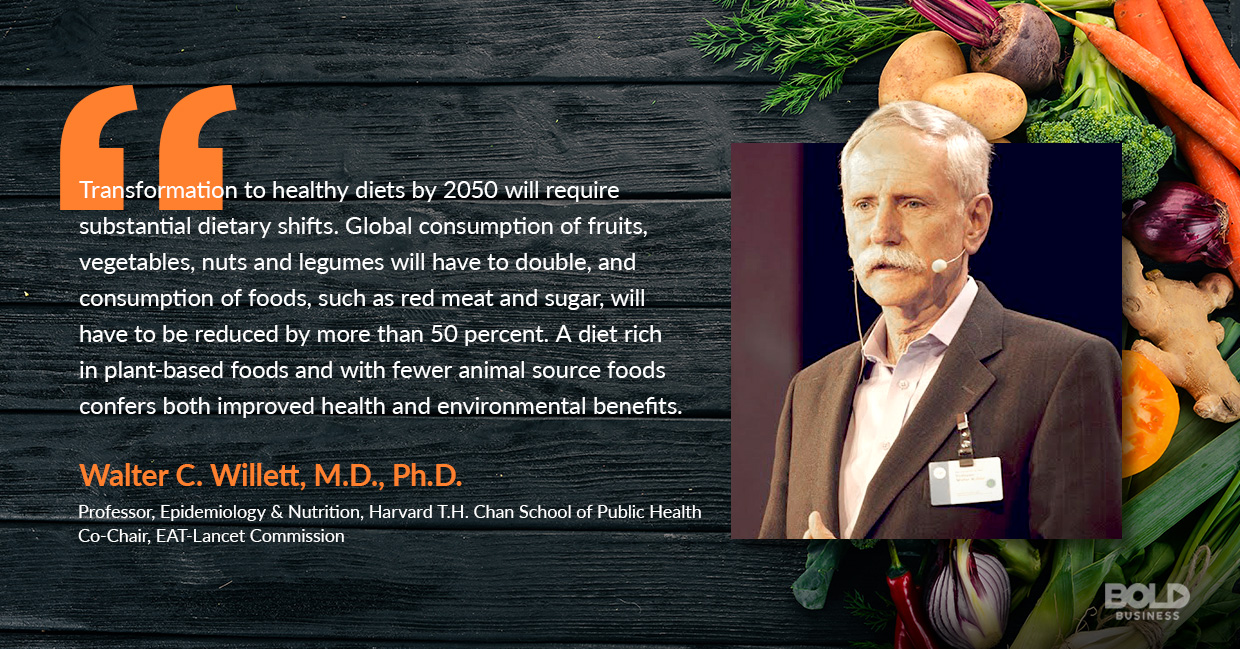 a photo quote of Walter C. Willett in relation to the topic on flexitarian diet