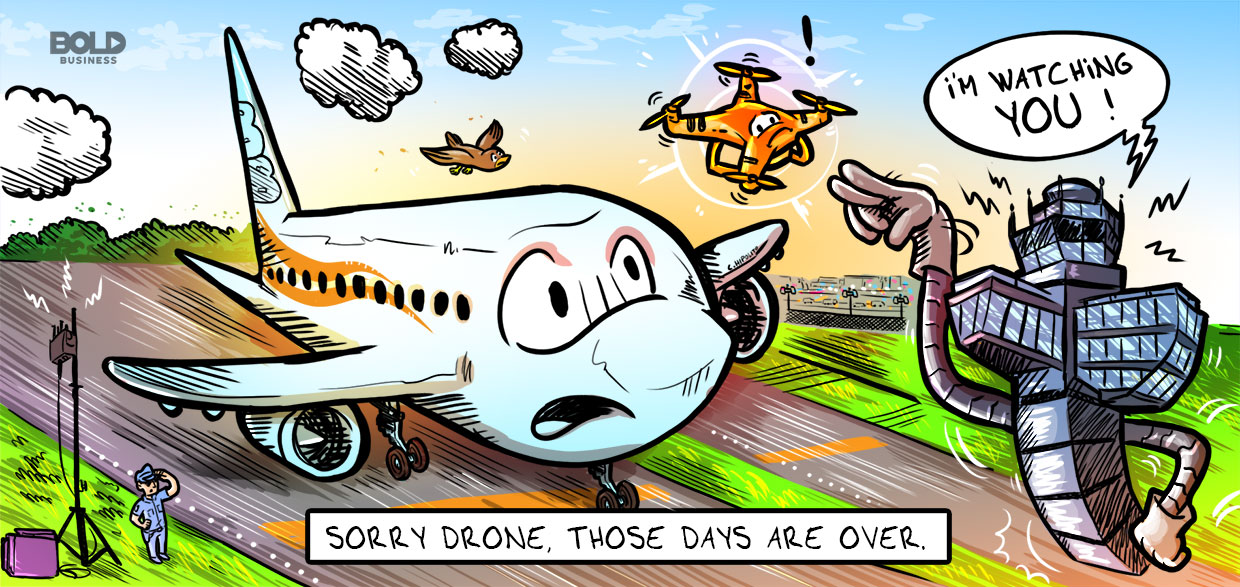 cartoon of a drone being policed by vorpal anti-drone technology