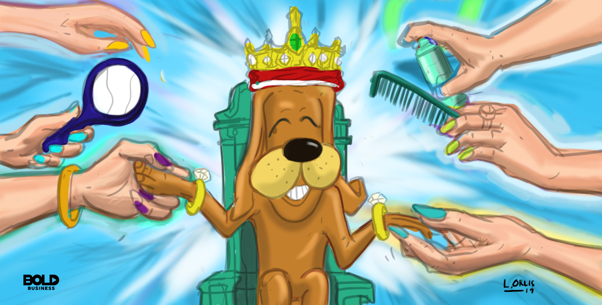 a cartoon of a dog receiving different grooming services.