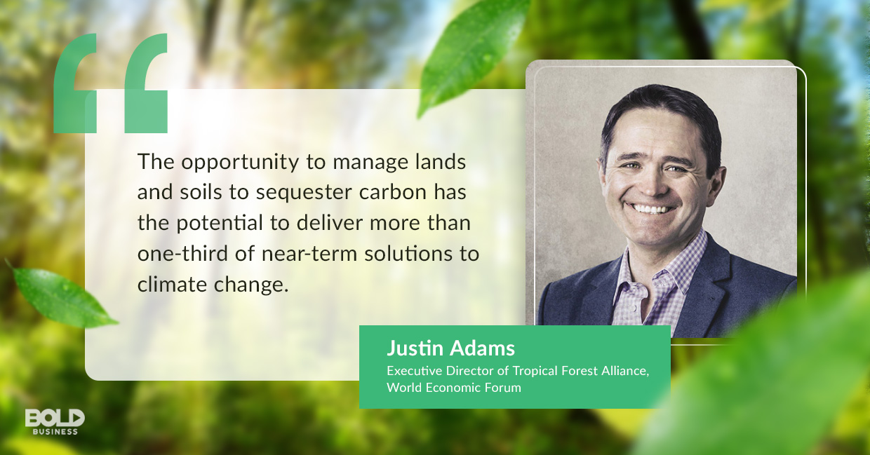 reforestation efforts, justin adams quoted