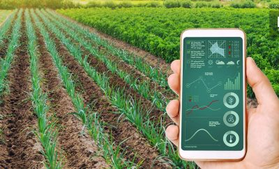 Someone holding an ag-tech app over a field