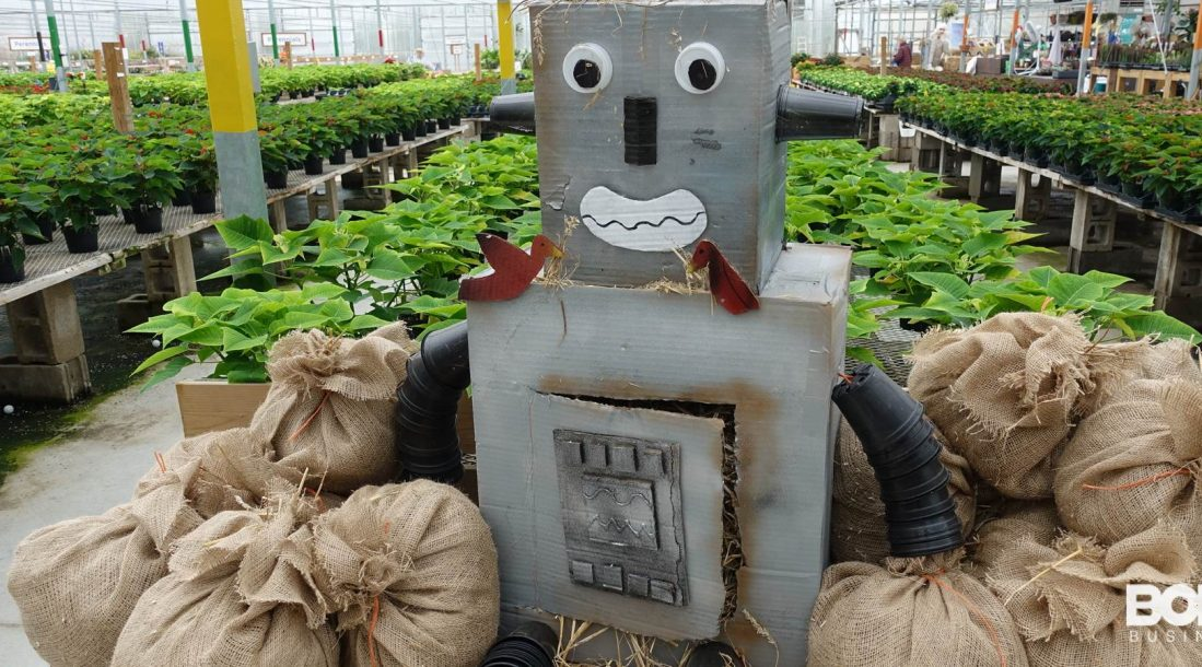 A poorly constructed robotic scarecrow