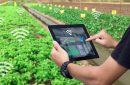 Someone using agtech to grow wifi crops