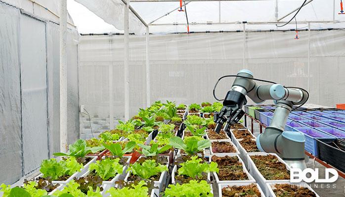 A robot doing some light gardening.