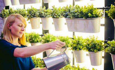 Story-About-How-Indoor-Gardening-Companies-Are-Helping-the-Climate-Sustainability-Featured-I